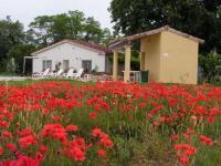 Location gîte, chambres d'hotes Au calme en drôme provençale région pleine de couleurs et de senteurs dans le département Drôme 26