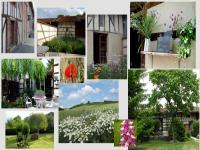 Location gîte, chambres d'hotes La Grange aux Orchidees dans un décor champenois authentique dans le département Marne 51
